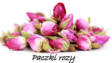 pączki-róży